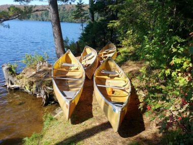 Summer Ontario Parks