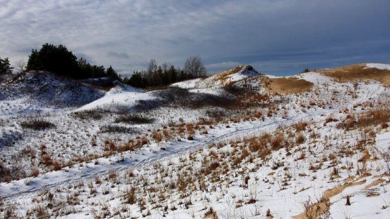 Sandbanks Park Guide